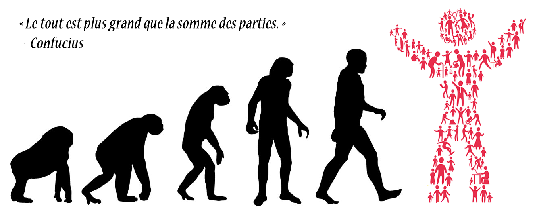 assets/images/affiches/human-evolution.png